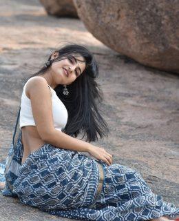 Ananya Nagalla Steals The Spotlight In Saree Look