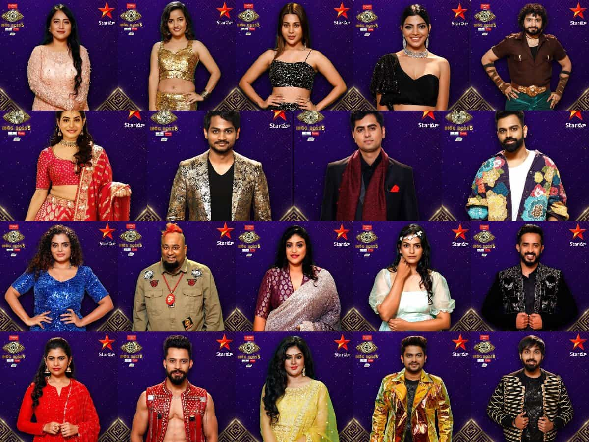 Bigg Boss 5: These Interesting 'Pairings' Aimed At Fights! - Bigg Boss 5 Contestants